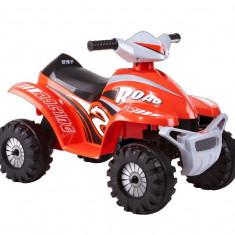 ATV electric Rollplay Mini Quad 6V