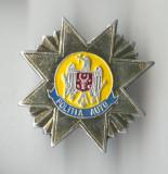 Insigna  MILITARA  - POLITIA AUTO