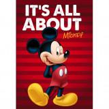 Paturica copii Mickey Red Star ST55888 B3406514