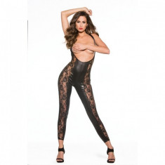 Bodystocking Lace and Wet Look Catsuit Kitten