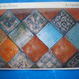 HOPCT 47142  AVIGNON PALATUL PAPILOR -FRANTA -NECIRCULATA, Printata
