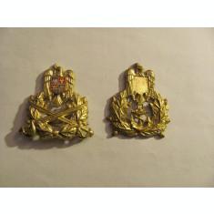 "CY - Cuc ""terestru"" Romania / bonus cuc ""marina"" dar incomplet / ambii dupa 1989"