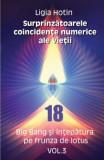 Surprinzatoarele coincidente numerice ale vietii vol.3 - Ligia Hotin