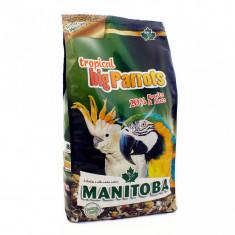 Hrana completa Papagali Tropicali Mari - 2 Kg