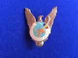 INSIGNA AVIATIE - PRIMUL COSMONAUT ROMAN IN SPATIU - PILOT -1981