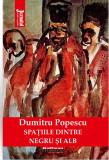 Spatiile dintre negru si alb | Dumitru Popescu