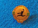 Insigna (rara) handbal - Comitetul Olimpic de Handbal din EGIPT