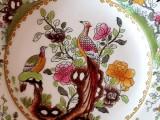 Farfurii CHINA - farfurie pictata manual pictura portelan pauni