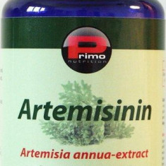 Artemisinin-extract din Artemisia annua, 100 mg, 90 caps, remediu cancer, tumori