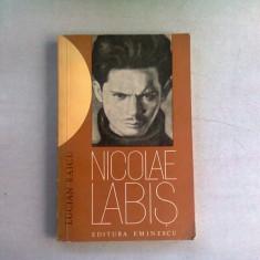 NICOLAE LABIS - LUCIAN RAICU