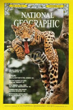 National Geographic - November 1977 (National Geogrphic Society)