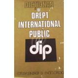 Dictionar de drept international public
