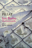 Ion Barbu. Micromonografie