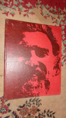 Viorel Marginean /album de pictura/text in lb germana an 1982 foto