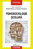 Psihosociologie scolara | Ciprian Ceobanu, Stefan Boncu
