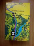 a2c PRIN MUNTII NOSTRI -I.SIMIONESCU