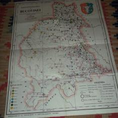 harta etnografica a Bucovinei 1910 (reeditare anii '90)