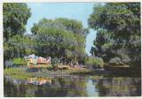 Bnk cp In Delta Dunarii - Vedere - necirculata, Printata