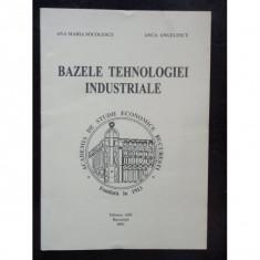 BAZELE TEHNOLOGIEI INDUSTRIALE - ANA MARIA SOCOLESCU