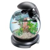 Acvariu pentru peşti Betta sau Goldfish - sferic 6.8 L, Tetra