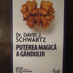 PUTEREA MAGICA A GANDULUI - DAVID J. SCWART