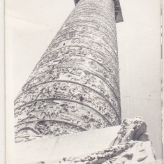 bnk foto Columna lui Traian vazuta de jos