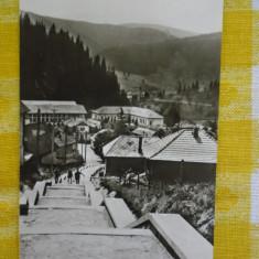Borsec - vedere spre depresiunea Borsecului - CP circulata 1965