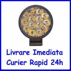 Proiector LED MINI SPOT 30°, 42W 12/24V AL-300620-7