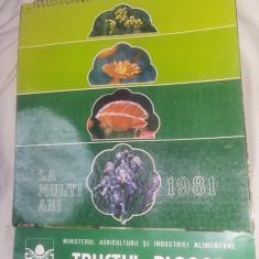 Calendar vechi de perete,TRUSTUL PLAFAR 1981,28 cm /21 cm,de colectie,T.GRATUIT