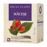 Ceai de Macese 50gr Dacia Plant Cod: dacp.00745