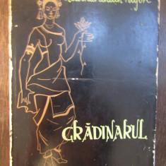 GRADINARUL-RABINDRANATH TAGORE