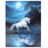 Tablou canvas Moonlight Unicorn 19x25cm - Anne Stokes