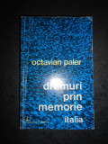 OCTAVIAN PALER - DRUMURI PRIN MEMORIE