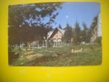 HOPCT 61463  VOINEASA -JUD VALCEA  -CIRCULATA