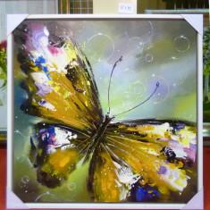 Tablou pictat manual pe panza in ulei, Fluture A-254, Natura, Realism