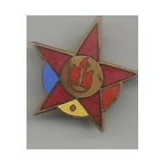 insigna- NSIGNA - PIONIERI - RPR