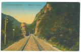 2005 - CALIMANESTI, Valcea, railway, Romania - old postcard - used - 1924