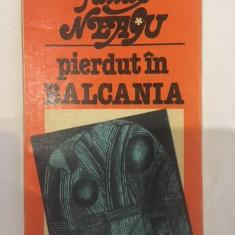 Fanus Neagu, Pierdut in Balcania