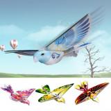 PASARE E BIRD CARE ZBOARA DE ADEVERATELEA,ACUMULATOR INCLUS,JUCARIE SUPER! NOU!