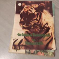 Gradina zoologica din Bucuresti