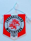 Fanion fotbal - FC Winterthur (Elvetia)