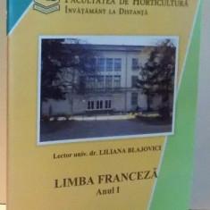 LIMBA FRANCEZA, ANUL I de LILIANA BLAJOVICI , 2009