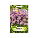 Seminte flori Florian Erigeron Batranis 0 5 g
