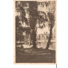 Carte Postala Craiova