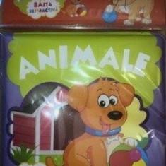 Baita distractiva. Animale/***