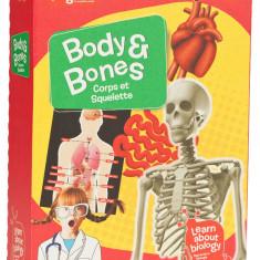 Set experimente - Descopera corpul uman