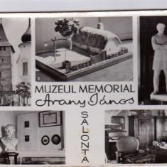 MOZAIC SALONTA MUZEUL MEMORIAL ARANY JANOS   RPR