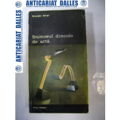 FRUMOSUL DINCOLO DE ARTA - Gheorghe ACHITEI