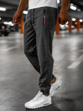 Cumpara ieftin Pantaloni de trening gri Bolf JX306