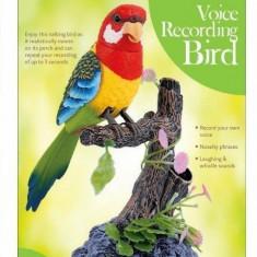Jucarie papagal vorbitor, multicolor, Gonga